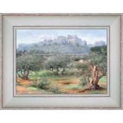 Oliviers des Baux de Provence