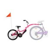Bicicleta Co-Pilot Roz Weeride