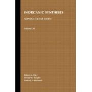 Inorganic Syntheses: Non-molecular Solids v. 30 by Leonard V. Interrante
