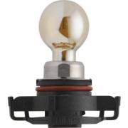Bulb, Fog Light