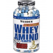 Whey Amino - 280 capsule