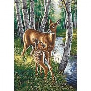 Dimensions Needlecrafts Paintworks Paint By Number White Tailed Deer