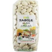 Fasole Alba Uriasa 500 Gr Bio Solaris Plant