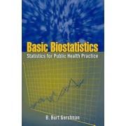 Basic Biostatistics by B. Burt Gerstman