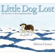 Little Dog Lost by Manica Carnesi