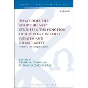 'What Does the Scripture Say?' Studies in the Function of Scripture in Early Judaism and Christianity: The Synoptic Gospels Volume 1 by Craig A. Evans