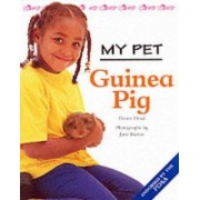 Guinea Pig by Honor Head
