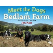 Meet the Dogs of Bedlam Farm by Jon Katz