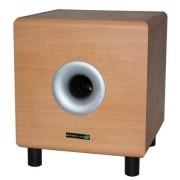 Boxe SUBWOOFER ACTIV 8 inch 100W CALVADOS HYUNDAI
