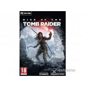 Joc software Rise of the Tomb Raider PC
