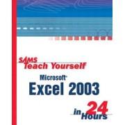 Sams Teach Yourself Microsoft Excel 2003 in 24 Hours by Trudi Reisner