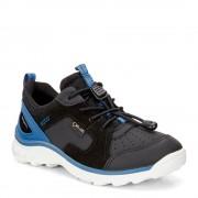 Pantofi copii ECCO Biom Trail (Negri cu albastru)