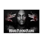 Skin Waka Flocka Flame - Flockaveli