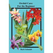 Orchid Care: For the Beginner