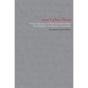 The Counterpunch (and Other Horizontal Poems)/El Contragolpe (y Otros Poemas Horizontales) by Juan Carlos Flores