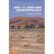 Arid and Semi-Arid Geomorphology by Andrew S. Goudie