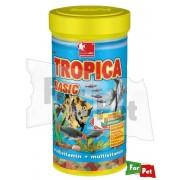 -DAJANA PET TROPICA BASIC LEMEZES HALELEDEL 250ML