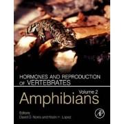 Hormones and Reproduction of Vertebrates: Amphibians v. 2 by David O. Norris