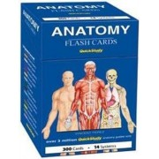 Anatomy Flash Cards by Vincent Perez