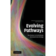 Evolving Pathways by Alessandro Minelli