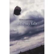 If the Sky Falls by Nicholas Montemarano