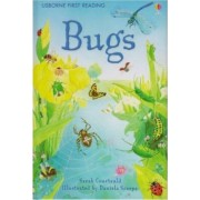 Bugs by Sarah Courtauld