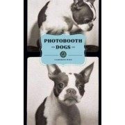 Photobooth Dogs by Cameron Woo