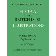 Flora of the British Isles: Pteridophyta-Papilionaceae v. 1 by A. R. Clapham