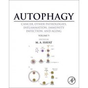 Autophagy: Cancer, Other Pathologies, Inflammation, Immunity, Infection, and Aging: Human Diseases and Autophagosome Volume 9 by M. A. Hayat