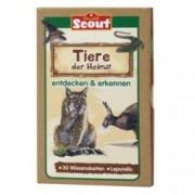 Scout Lernkarten Tiere Verschiedene I