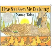 Have You Seen My Duckling? Board Book by Nancy Tafuri