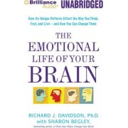 The Emotional Life of Your Brain by Williams James and Vilas Research Professor of Psychology & Psychiatry Richard J Davidson