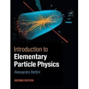 Introduction to Elementary Particle Physics by Alessandro Bettini