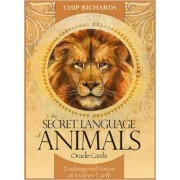 Secret Language of Animals Oracle Cards by Chip Richards