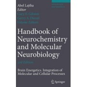 Handbook of Neurochemistry and Molecular Neurobiology by Abel Lajtha
