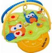Covoras de joaca pentru bebelusi Baby Mix 3375C-20 Owl
