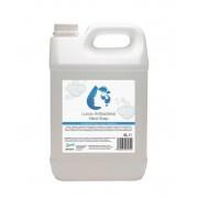 2Work Antibacterial Hand Wash 5 Litre (Pk 1) 213