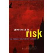 Democracy at Risk by Jennifer L. Merolla