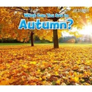 What Can You See in Autumn? by Sian Smith