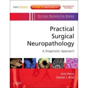 Practical Surgical Neuropathology: A Diagnostic Approach by Arie Perry