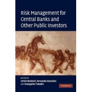 Risk Management for Central Banks and Other Public Investors by Ulrich Bindseil