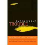 Engineering Trouble by Rachel A. Schurman