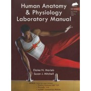 Human Anatomy & Physiology Laboratory Manual, Rat Version by Elaine N. Marieb