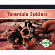 Tarantula Spiders by Claire Archer