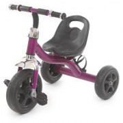 The Flyers Bay Easy to Roam Tricycle with Bottle Holder TFB-TriBottlePurp