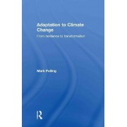 Adaptation to Climate Change by Mark Pelling