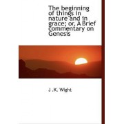 The Beginning of Things in Nature and in Grace; Or, a Brief Commentary on Genesis by J K Wight