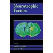 Neurotrophic Factors by Sandra E. Loughlin