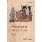 Introduction to Middle Eastern Law by Chibli Mallat