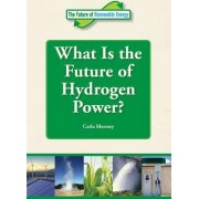 What Is the Future of Hydrogen Power? by Carla Mooney